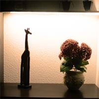 LED Streifen mit großem Abstrahlwinkel für modische Designbeleuchtung