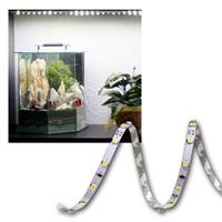 5m FLEX SMD Streifen 300 LED weiß, 5mm PCB-WEISS