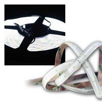 LED Lichtband 4,8m, SMD LEDs kaltweiß 12V, klebend