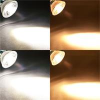 Leuchtfarbe, Leistung und Sockel sind bei den LED Strahlern wählbar