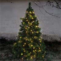 stimmungsvolle LED Beleuchtung für Bäume in der Adventszeit