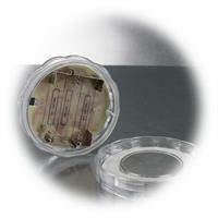 batteriebetriebenes LED Unterwasserlicht für farbenfrohe Dekoideen
