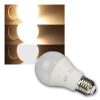 LED Glühbirne G70-DM | E27 | warmweiß | 800lm | dimmbar