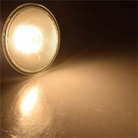 LED Strahler PAR38 mit E27-Sockel in 2 Leuchtfarben