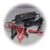 Geräte für Ladung, Unterhaltungsladung und Instandsetzung von Autobatterien