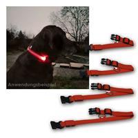 Hunde-Halsband LED beleuchtet | 4 Größen | 3 Leuchtmodi