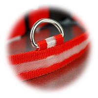 LED Halsband mit gehärteten Edelstahlring für die Leine
