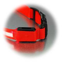 LED Hundehalsband aus Nylongeflecht mit Lasche für Batteriefach