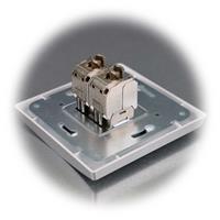 Silberne Netzwerkdose mit 2xCat6 Anschlüssen für LAN bis 300MHz