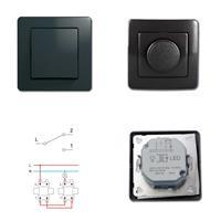 EKONOMIK Wechsel-Schalter und LED Dimmer, anthrazit, 250V~/10A, UP