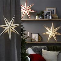 Weihnachtsstern Randi in unterschiedlichen Farben, für den Innenbereich