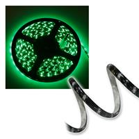 LED Strip CLS green 12V, 21W, 300 LEDs, 5m, IP44