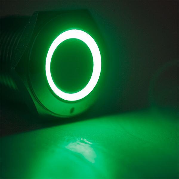 Schalter mit grüner LED Ringbeleuchtung, Spannung 6 bis 24V AC/DC
