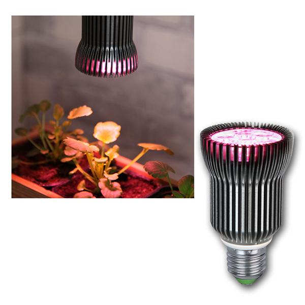 E27 LED Pflanzenlampe Wachsen 230V 5W 178lm