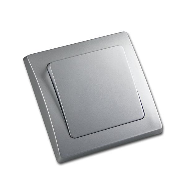 DELPHI Schalter 250V~/ 10A, Klemmanschluss silber