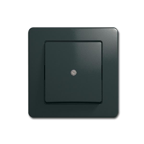 EKONOMIK Kontroll-Schalter anthrazit 250V~/10A, UP
