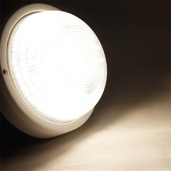 LED Außenwandleuchte mit neutralweißem Licht und Glasabdeckung