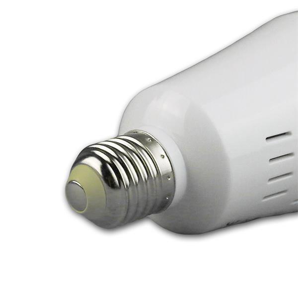 LED Licht Flower Magic mit Lampensockel E27 für 230V