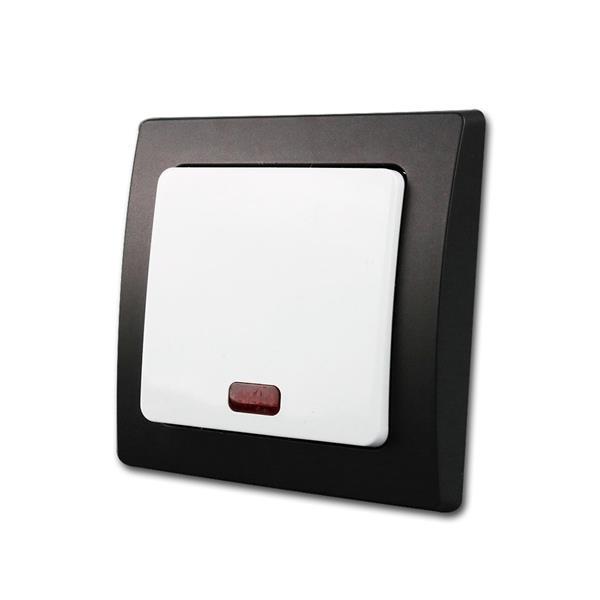 DELPHI Kontroll-Schalter schwarz/weiß 250V/10A