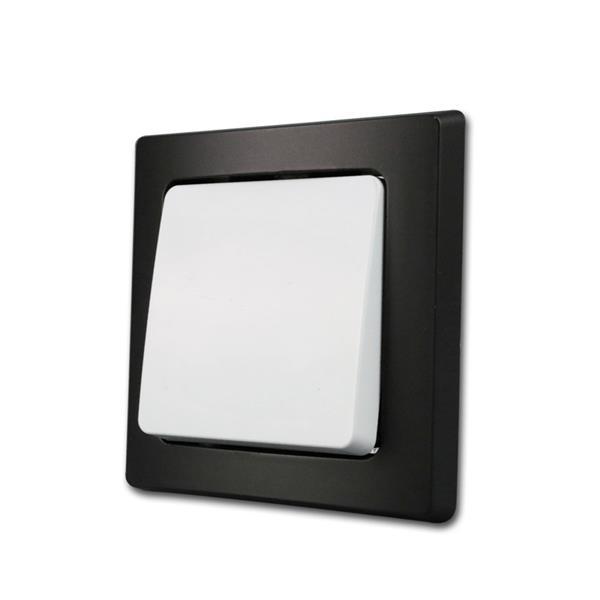 DELPHI Taster schwarz/weiß 250V/10A