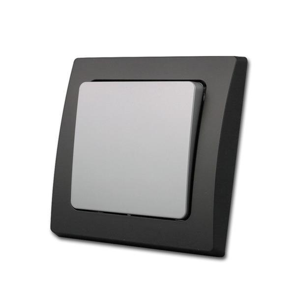 DELPHI Wechsel-Schalter schwarz/silber, Schraubanschluss
