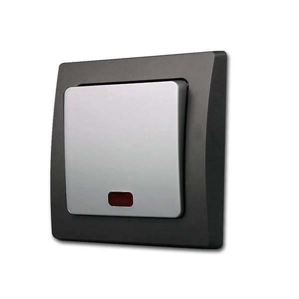 DELPHI Kontroll-Schalter schwarz/silber 250V/10A