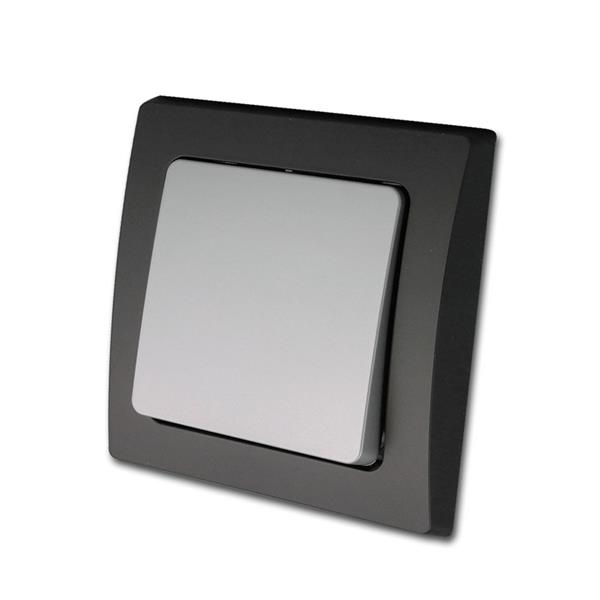 DELPHI Taster schwarz/silber 250V/10A