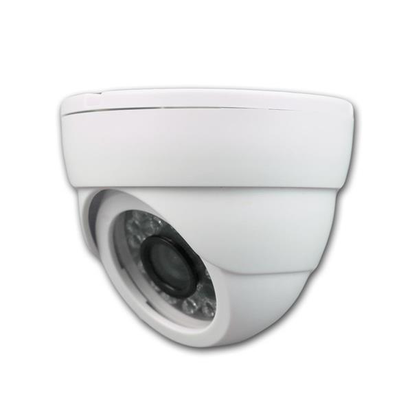 Tag/Nacht Dome-Kamera weiß, CCD Color, BNC, IR