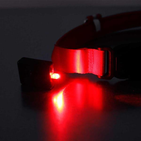 LED Sicherheits-Halsband für Vierbeiner mit roter LED
