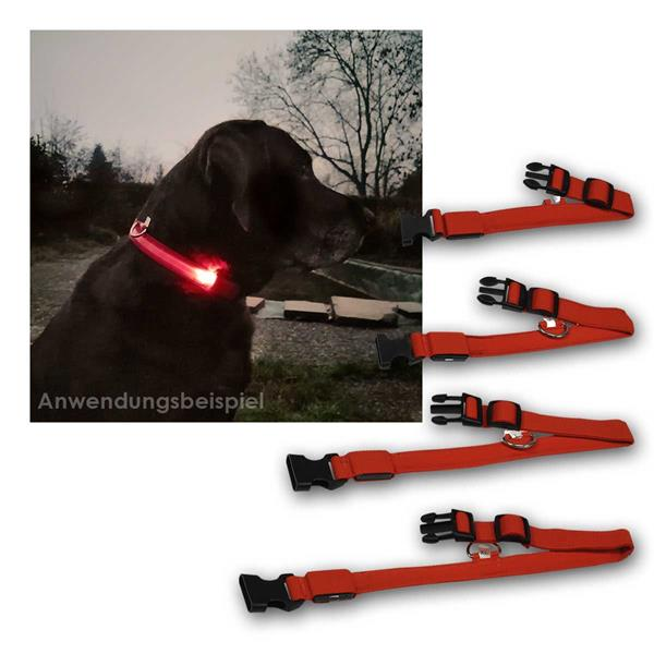 LED Hunde-Halsband rot, 4 Gößen - S/M/L/XL